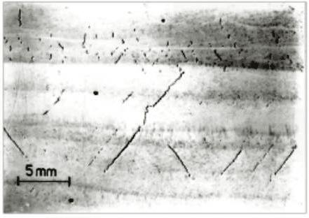Mặt cắt - nứt Chevron Cracks dạng phân nhánh